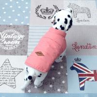 [펫딘]라인 패딩 똑딱이 강아지옷 조끼 Pink E010