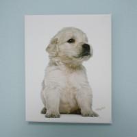 art canvas #T010 - pure puppy