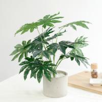 조화 메이플 화이트스톤 나무 화분