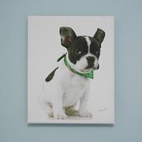 art canvas #T012 - french bulldog