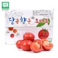 [행사] 달향토마토 중과 5kg / GAP인증토마토