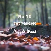 10월 캔들. 젖은낙엽을 연상케하는 가을향