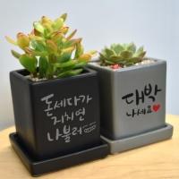 [개업식선물] 캘리그라피 컬러미니화분