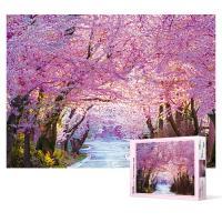 500피스 직소퍼즐 - 벚꽃길