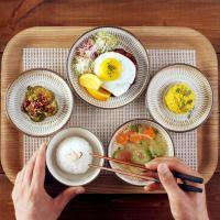 일본식기 브라운시드 반상세트