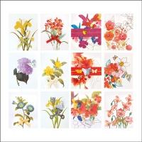 리본 꽃카드 FT5050 (12종 한세트)