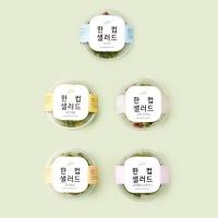 [원더그린X정기배송] 한컵샐러드 20팩(5팩X4주)