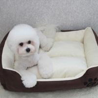 심플배색 강아지방석 쿠션 마약방석 - 초코브라운
