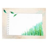 캘리그림엽서-숲(10장)