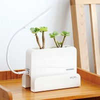 [Kium] SMART LED FLOWER POT (조명 화분)