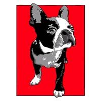DIY 명화그리기키트 - 프렌치 불독 40x50cm (물감2배, 컬러캔버스, 명화, 동물, 개, 불독)
