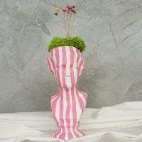 핑크 줄무늬 석고상화분 스타플라워+모스+리본