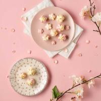 피나포레 X DIA FOOD 순백설탕 벚꽃 마카롱 홈베이킹