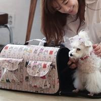 2015 New 애견 패션 이동장 - 큐티 토끼 이동가방/강아지 가방/애견 가방