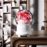 드보르 JD-F50 벚꽃 미니 초음파 가습기(핑크)