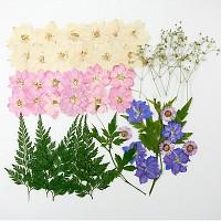 웨딩부케 꽃모음(압화-누름꽃)
