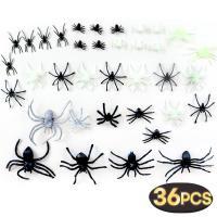 거미 모형 종합세트 36개입