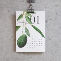 [2020 캘린더] Botanical