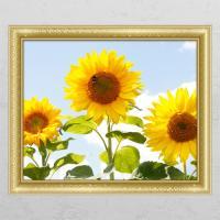 cd336-꿀벌과해바라기_창문그림액자