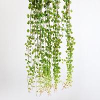 블랜드 조화 잎바인