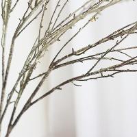 [콩지] 슬림 나뭇가지 조화 1P