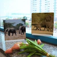 pf098-스탠드액자2P-이동중인코끼리
