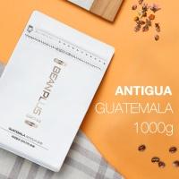 [빈플러스] 신선한 로스팅 원두커피 안티구아 1kg