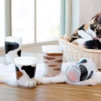 coconeco 고양이발 유리컵 아기고양이 230ml