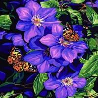 [DIY 명화] B63꽃과나비 size40*50cm