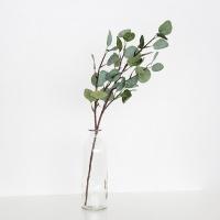 둥근잎 유칼립투스 조화 가지