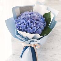 감성가득 빈티지 블루 수국꽃다발 생화[전국택배]