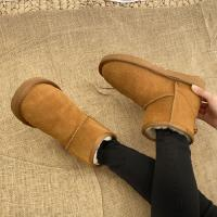 Classic Short Boots - 양가죽 스웨이드