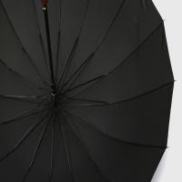 파라체이스 16K 레드우드 대형 자동 장우산 1085