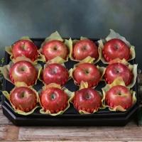 [과일농산]팔각 사과 세트 4.3kg (12과)