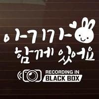 SET_심플토끼+블랙박스 [자동차스티커/아기가타고있어요]