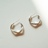 silver small curve earring