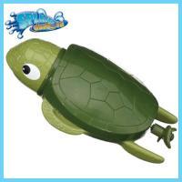 [스플래쉬대셔] 거북이