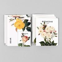 Card set-08 Flower (카드/예쁜카드)