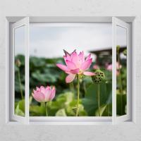 ij981-행복을주는연꽃3_창문그림액자