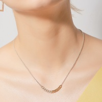 i_n24 - two tone chain necklace