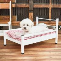 투인플레이스 강아지 고양이 사계절 대리석 하우스침대