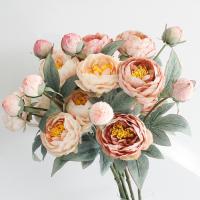 모란꽃 가지 - 3color