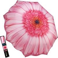 핑크 데이지 - 3단자동우산
