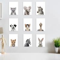 아이들이 좋아하는 아기동물 27종 사진세트
