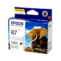 엡손(EPSON) 잉크 C13T087090 / NO.87 / 2pcs Gloss Optimizer / Stylus Photo R1900
