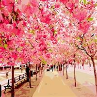 [DIY명화]B389 만개한벚꽃나무 size 50*40cm