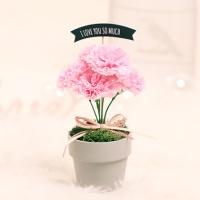 비누 카네이션 화분(핑크)