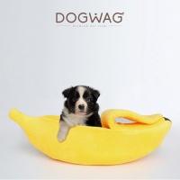 [도그웨그 DOGWAG] 고양이 바나나 숨숨집