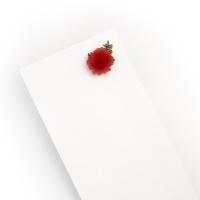 미니카네이션 리본꽃봉투 Carnation Enveloe 감사봉투