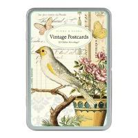 카발리니 엽서세트 - 꽃과 새
